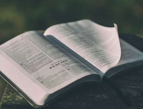 Message du 27/01/2019 – «Il se leva pour faire la lecture»