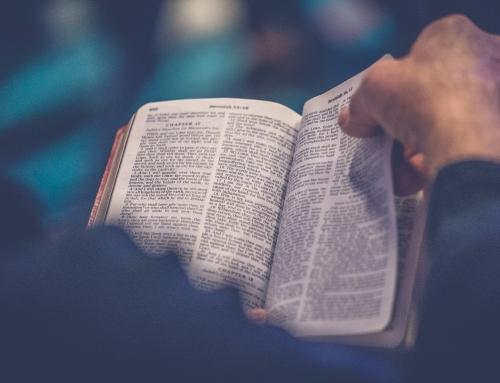 «Soyez forts, ne craignez pas… Voici votre Dieu…» Message du 15 12 19