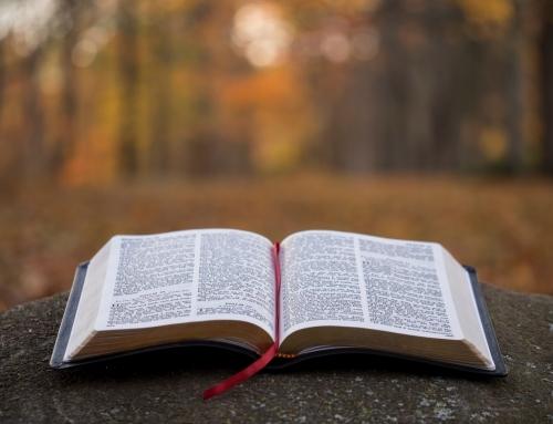 «Repentez-vous et croyez à l'Évangile…» Message du 24/01/2021